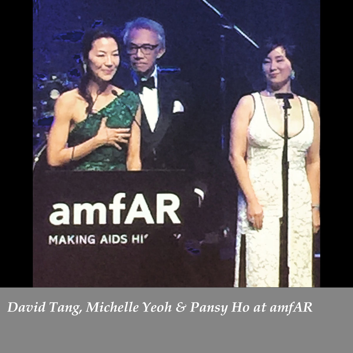 David-Tang-Michelle-Yeoh-Pansy-Ho-at-amfAR